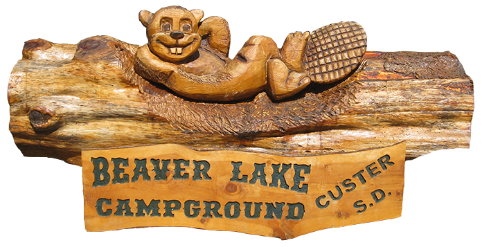 Beaver Log Sculpture